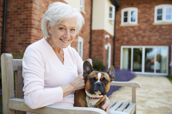 The Best Dog Breeds for Retirees